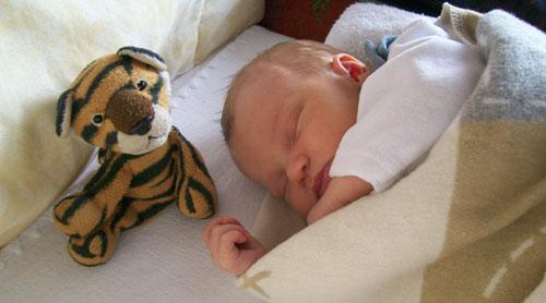 Kuscheltiere als Einschlafhilfe